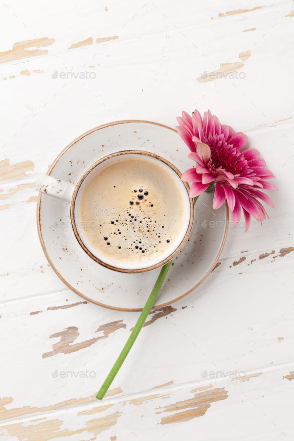 Coffee cup and gerbera flower - Stock Photo - Images