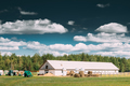 Countryside Rural Paddock For Horse, Shed Or Barn Or Stable With - PhotoDune Item for Sale