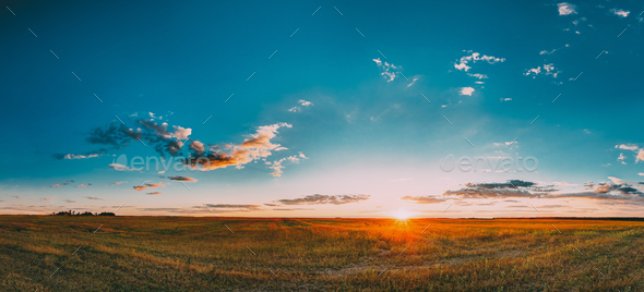 Sunset, Sunrise Rural Meadow Field In August Month. Countryside - Stock Photo - Images
