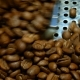 Grinder with Coffee Beans - VideoHive Item for Sale