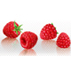 Raspberry - GraphicRiver Item for Sale