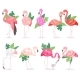 Flamingo Vector Tropical Pink Flamingos and Exotic