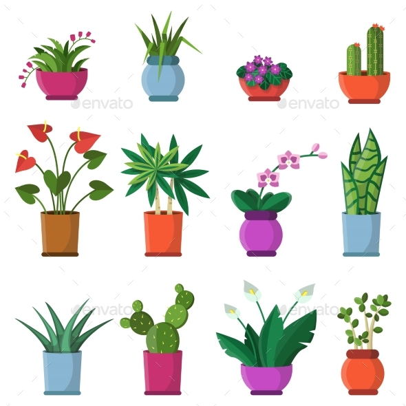 Vector Illustrations of House Plants in Pots - Objects Vectors