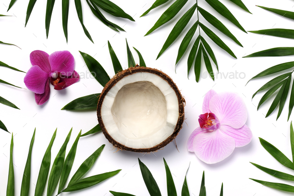 tropical composition - Stock Photo - Images