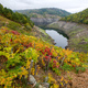 Ribeira Sacra and its hillsides covered with vineyards - PhotoDune Item for Sale