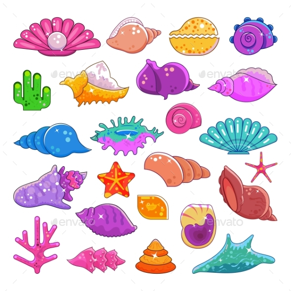 Sea Shells Vector Exotic Marine Cartoon Clam-Shell by ...