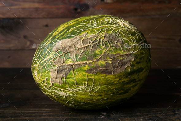 whole melon on rustic wooden board - Stock Photo - Images