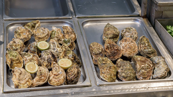 Fresh oysters on the fish market - Stock Photo - Images