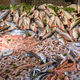 Seafood at the fish market - PhotoDune Item for Sale