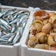 Sprat and sea snails on the fish market - PhotoDune Item for Sale