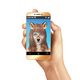 Animal Faces Smartphone Mobile App Composition