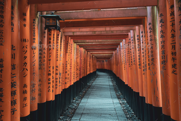 Fushimi Inari Shrine - Stock Photo - Images