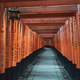 Fushimi Inari Shrine - PhotoDune Item for Sale