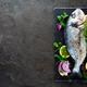 Fresh fish dorado. Raw dorado - PhotoDune Item for Sale