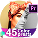 Color Correction & Color Grading Presets for Premiere Pro