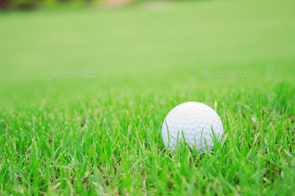 golf ball on green lawn - Stock Photo - Images