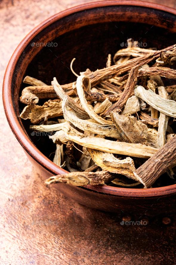 Medicinal root inula - Stock Photo - Images