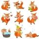 Cartoon Fox Character Set
