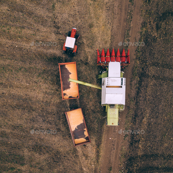 Aerial view of combine pouring harvested corn grains into traile - Stock Photo - Images