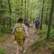 Three Friends Are Walking Along a Mountain Path in the Forest. Active Way of Life, Tourism and - VideoHive Item for Sale