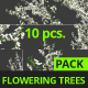 Flowering Trees - VideoHive Item for Sale