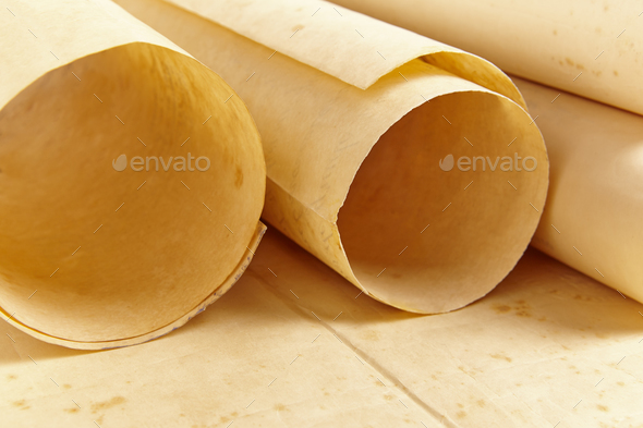 Old aged blank rolled parchments. Antique documents. Vintage manuscripts. Horizontal Stock Photo by ABBPhoto