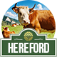 Hereford - An Agriculture and Organic Food Theme - ThemeForest Item for Sale