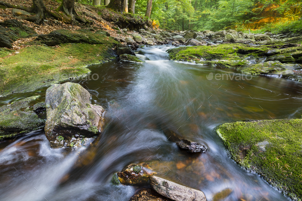 Mountain Stream In Evening Light - Stock Photo - Images