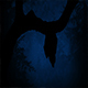 Bat Flies Off Tree Branch In The Forest - VideoHive Item for Sale