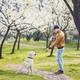 Man with dog in spring public park - PhotoDune Item for Sale