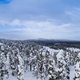 Aerial/Drone View of Snow Covered Tree Forest - PhotoDune Item for Sale