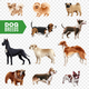 Dog Breeds Transparent Icon Set - GraphicRiver Item for Sale