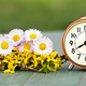 Summertime banner - fresh flowers and alarm clock - PhotoDune Item for Sale