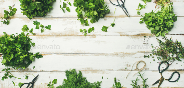 Various fresh green kitchen herbs over wooden background, wide composition - Stock Photo - Images