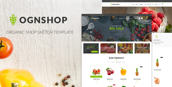 Ognshop - Organic Food & Health Products Sketch Template - Sketch Templates