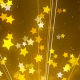 Star Glittering Golden Backgrounds - VideoHive Item for Sale