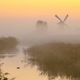 Windmill in wetland - PhotoDune Item for Sale