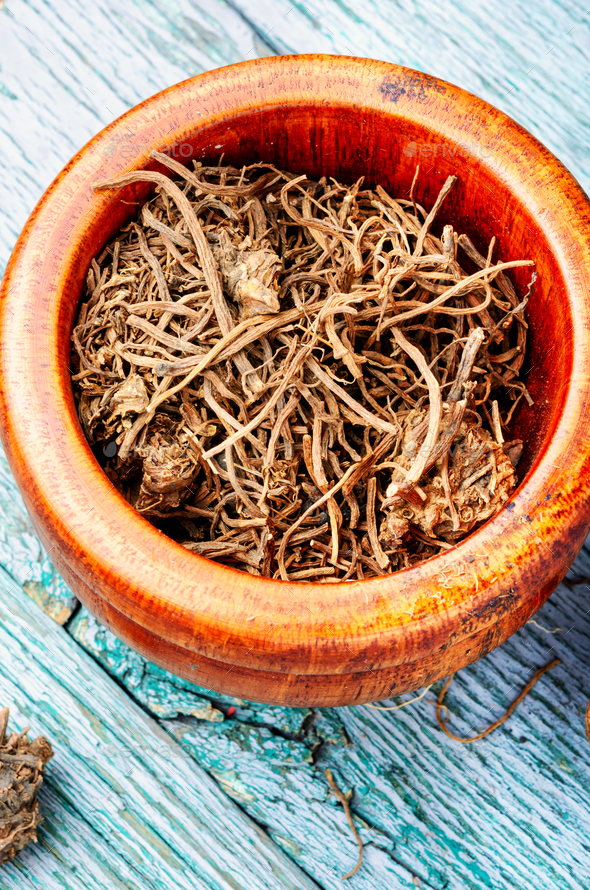 Valerian herb root - Stock Photo - Images