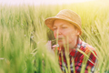 Female farmer examining wheat ears in field - PhotoDune Item for Sale