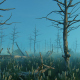 Swamp And Old Trees - VideoHive Item for Sale