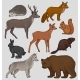 Wild Northern Forest Animals Set, Hedgehog