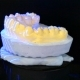 3D Scanning a Model of Human Teeth - VideoHive Item for Sale