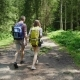 Rear view:Friends with Backpacks on Their Backs Follow a Path in the Forest. Active Young People in - VideoHive Item for Sale