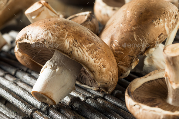 Raw Organic Portobello Mushrooms - Stock Photo - Images
