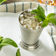 Homemade Kentucky Mint Julep - PhotoDune Item for Sale