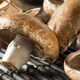 Raw Organic Portobello Mushrooms - PhotoDune Item for Sale