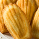 Homemade Sweet French Madeleines - PhotoDune Item for Sale