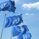 Waving Flags of the United Nations UN Against the Sky - VideoHive Item for Sale