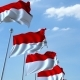 Waving Flags of Indonesia Against the Sky - VideoHive Item for Sale