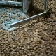 Coffee Beans Factory Mixing - VideoHive Item for Sale
